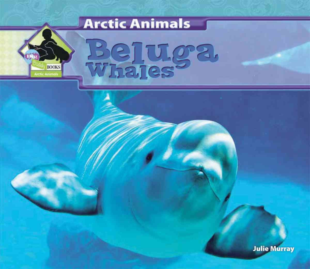 Beluga Whales By Murray, Julie